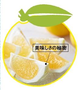 日向夏鶴乃子美味しさの秘密